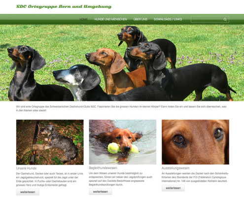 Webseite Ortsgruppe Bern und Umgebung
